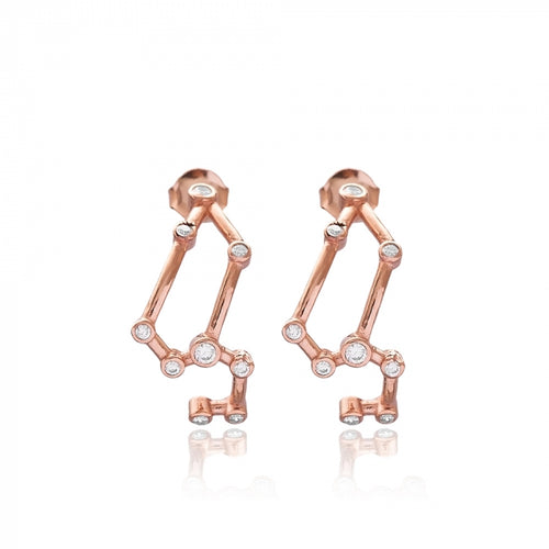 Leo Elegant Zodiac Sign Constellation  Turkish Earring