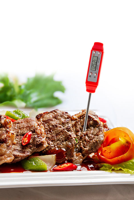 "Pocket Thermomter with 2.9"" Food Grade Stainless Steel Probe, Temperature Range of -58 to 572°F (-50 to 300°C) - (TMP10)"