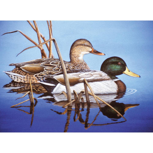 "Paint By Number Kit 15.375""X11.25"" - Blue Water Mallards"