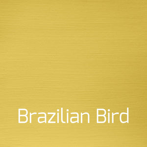 Autentico Versante Brazilian Bird