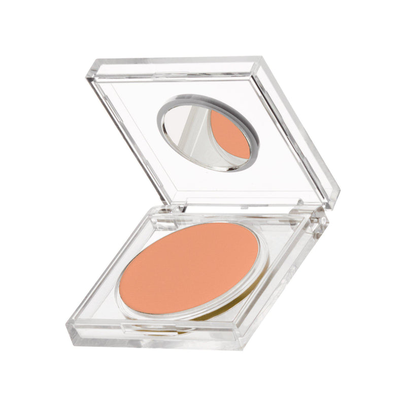 Color Disc-Orange Sherbet
