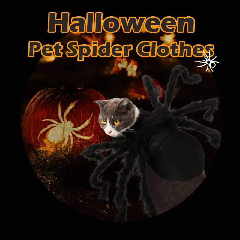 Halloween Pet Spider Clothes
