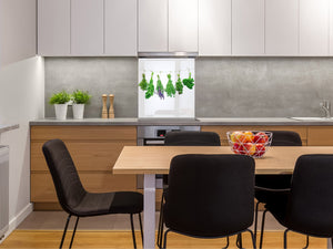 Stylish Tempered glass backsplash – Glass kitchen splashback BS01 Herbs Series: Hanging Herbs 1