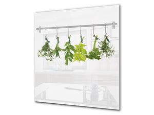 Stylish Tempered glass backsplash – Glass kitchen splashback BS01 Herbs Series: Hanging Herbs 4