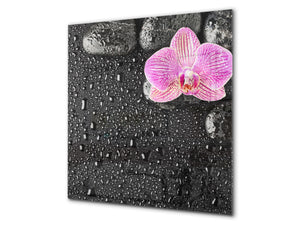 Unique Glass kitchen panel BS02 Stone Series: Orchid Drops Of Water