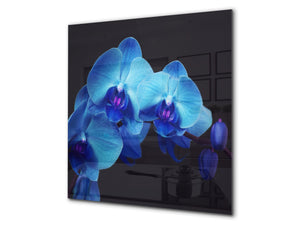Glass kitchen backsplash – Photo backsplash BS03 Flower Series: Blue Orchid 1