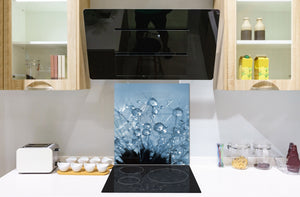 Toughened glass backsplash BS 04 Dandelion and flowers series: Dandelion Drops 1