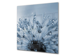 Toughened glass backsplash BS 04 Dandelion and flowers series: Dandelion Drops 2