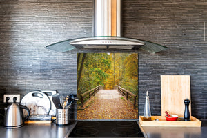 Tempered glass kitchen wall panel BS24 Bridges Series: Forest Park Bridge