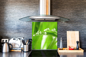 Kitchen & Bathroom splashback BS17 Green grass and cereals Series Leaf Drops Of Water 4