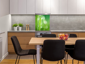 Kitchen & Bathroom splashback BS17 Green grass and cereals Series Leaf Drops Of Water 5