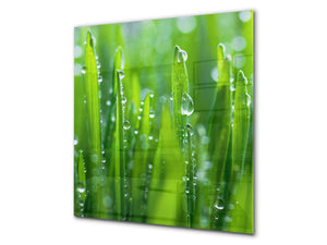 Kitchen & Bathroom splashback BS17 Green grass and cereals Series Grass Leaf Green 2