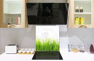 Kitchen & Bathroom splashback BS17 Green grass and cereals Series Grass Leaf Green 5