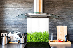 Kitchen & Bathroom splashback BS17 Green grass and cereals Series Grass Leaf Green 6