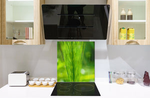 Kitchen & Bathroom splashback BS17 Green grass and cereals Series Grass Leaf Green 8