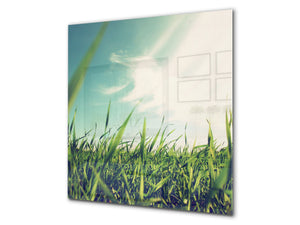 Kitchen & Bathroom splashback BS17 Green grass and cereals Series Grass Leaf Meadow