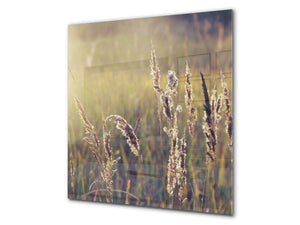 Kitchen & Bathroom splashback BS17 Green grass and cereals Series Cereal Meadow Stalk 1