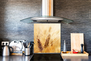 Kitchen & Bathroom splashback BS17 Green grass and cereals Series Cereal Meadow Stalk 3