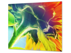 Glass Cutting Board and Worktop Saver D06 Flowers Series:  Sunflower stem