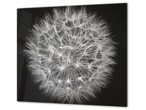 Glass Cutting Board and Worktop Saver D06 Flowers Series: Dandelion 4