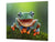 Tempered GLASS Cutting Board 60D01: A smiling frog 2