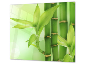 Tempered GLASS Kitchen Board – Impact & Scratch Resistant; D08 Nature Series: Bamboo shoots
