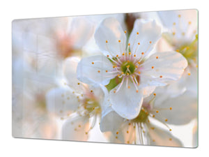 ENORMOUS  Tempered GLASS Chopping Board - Flower series DD06A Cherry blossom 1