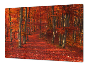 Very Big Cooktop saver - Nature series DD08 Autumn forest
