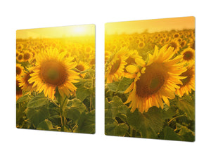 ENORMOUS  Tempered GLASS Chopping Board - Flower series DD06A Sunflower 2