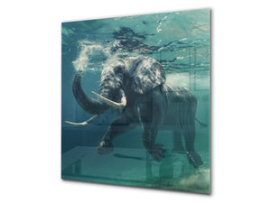 Glass kitchen backsplash – Photo backsplash BS20 Seawater Series: Elephant Under Water