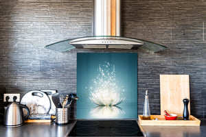 Toughened glass backsplash BS 04 Dandelion and flowers series: Shining Water Lily 1