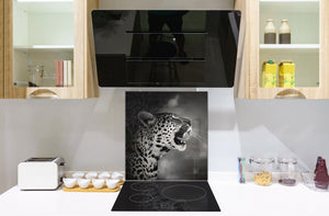 Art glass design printed glass splashback BS21A  Animals A Series: Tiger Black And White 5