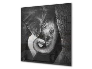 Art glass design printed glass splashback BS21A  Animals A Series: Black And White Elephant 1
