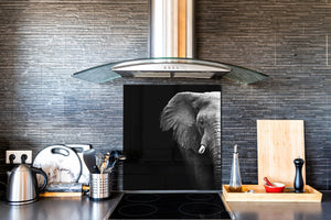 Art glass design printed glass splashback BS21A  Animals A Series: Black And White Elephant 2