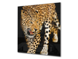 Art glass design printed glass splashback BS21A  Animals A Series: Tiger Cheetah 2