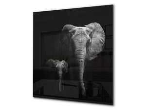 Art glass design printed glass splashback BS21A  Animals A Series: Black And White Elephant 3