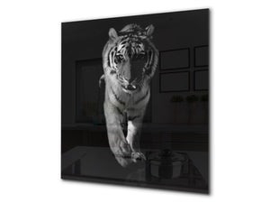 Toughened glass backsplash – BS21B  Animals B Series: Tiger Cheetah 3