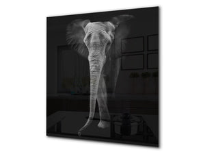 Toughened glass backsplash – BS21B  Animals B Series: Black And White Elephant 6