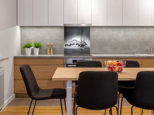 Toughened glass backsplash – BS21B  Animals B Series: Gray Deer