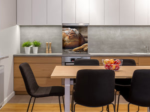 Glass kitchen backsplash BS22 Bakery products Series: Wheat Bread Bread 1