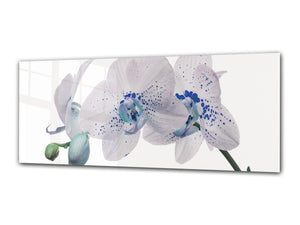 "Glass Print Wall Art – Image on Glass 125 x 50 cm (≈ 50"" x 20"") ; Orchid 10"