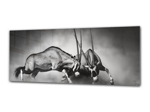 "Glass Print Wall Art – Image on Glass 125 x 50 cm (≈ 50"" x 20"") ; Animals 3"