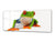 "Glass Print Wall Art – Image on Glass 125 x 50 cm (≈ 50"" x 20"") ; Mr. Frog"