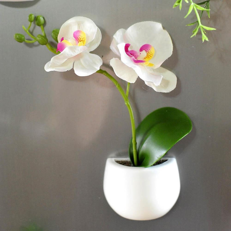 Mini Fridge Magnet Planter - Modernly Decor