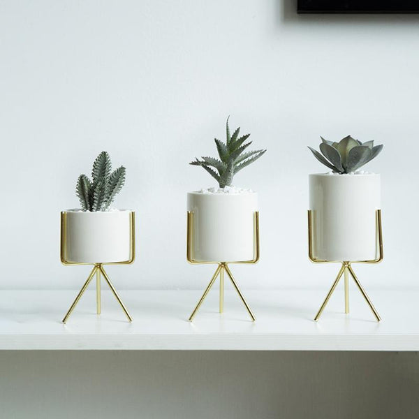 Sui - White Ceramic Planters - Modernly Decor