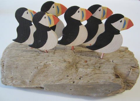Puffin family on coastal driftwood