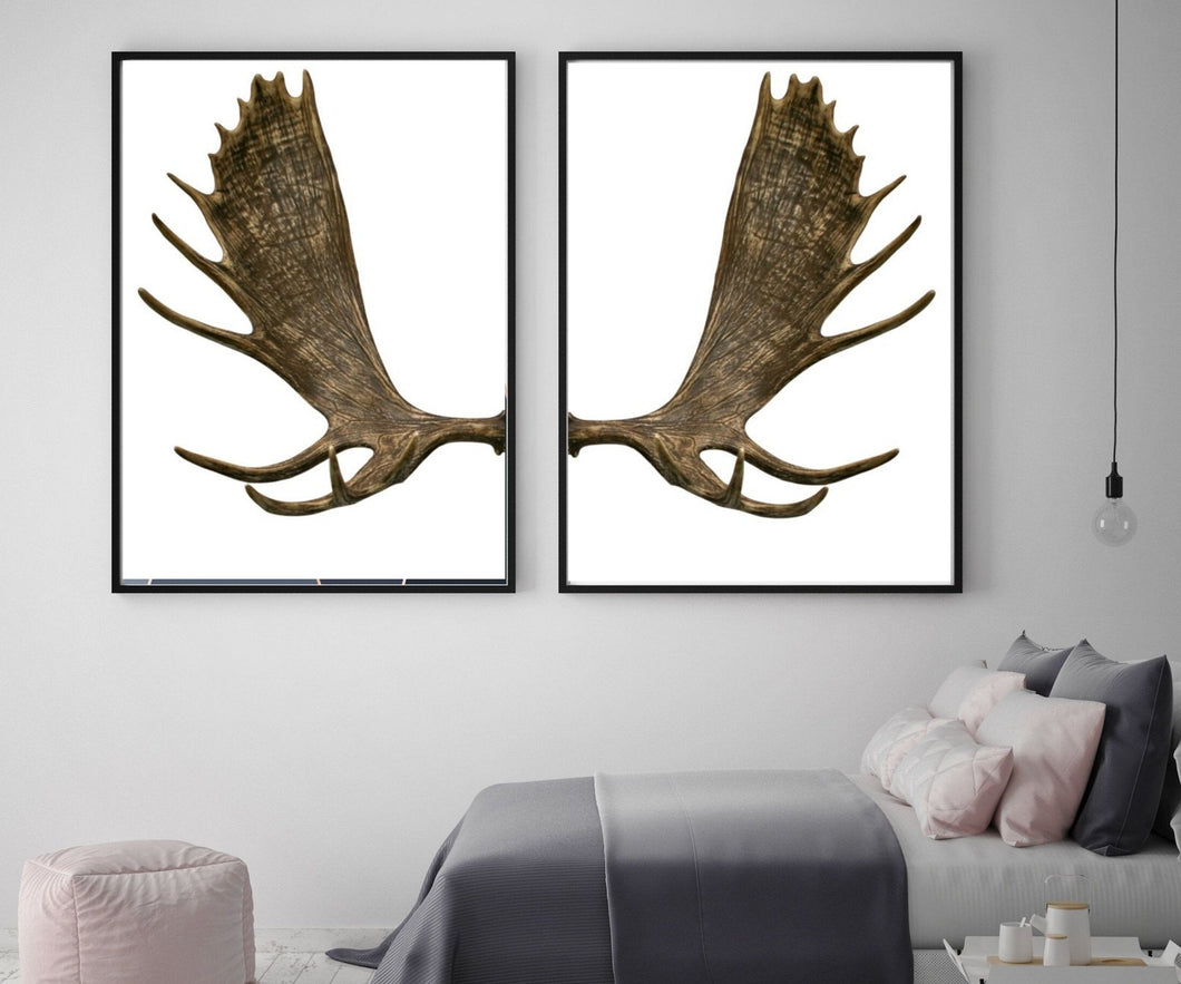 Moose Antlers Home Wall Art set of 2  Canvas Art print, Framed art print or poster