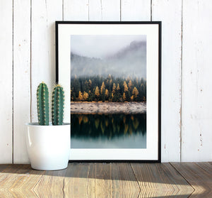 Forest Print, Canvas Print, Nature Prints, Forest Photography, Forest Wall Art, Woodland Prints, Forest Nursery Decor, Wilderness Poster