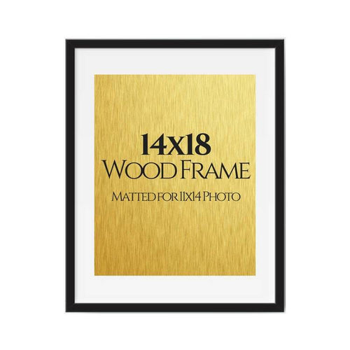 14x18 black picture frames matted for 11x14 photo, poster, art
