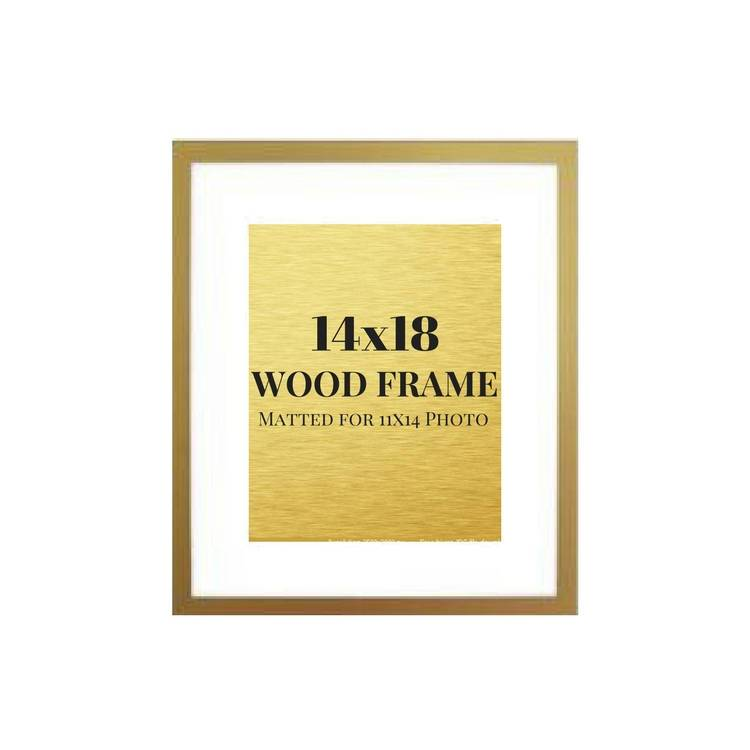 Gold picture frame 14x18 matted 11x14